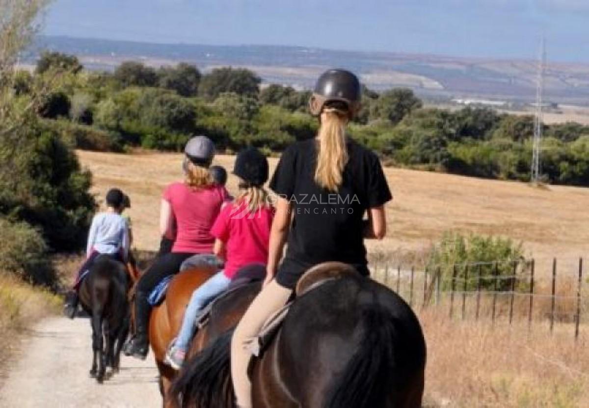 Ruta a caballo en Prado del Rey Imagen