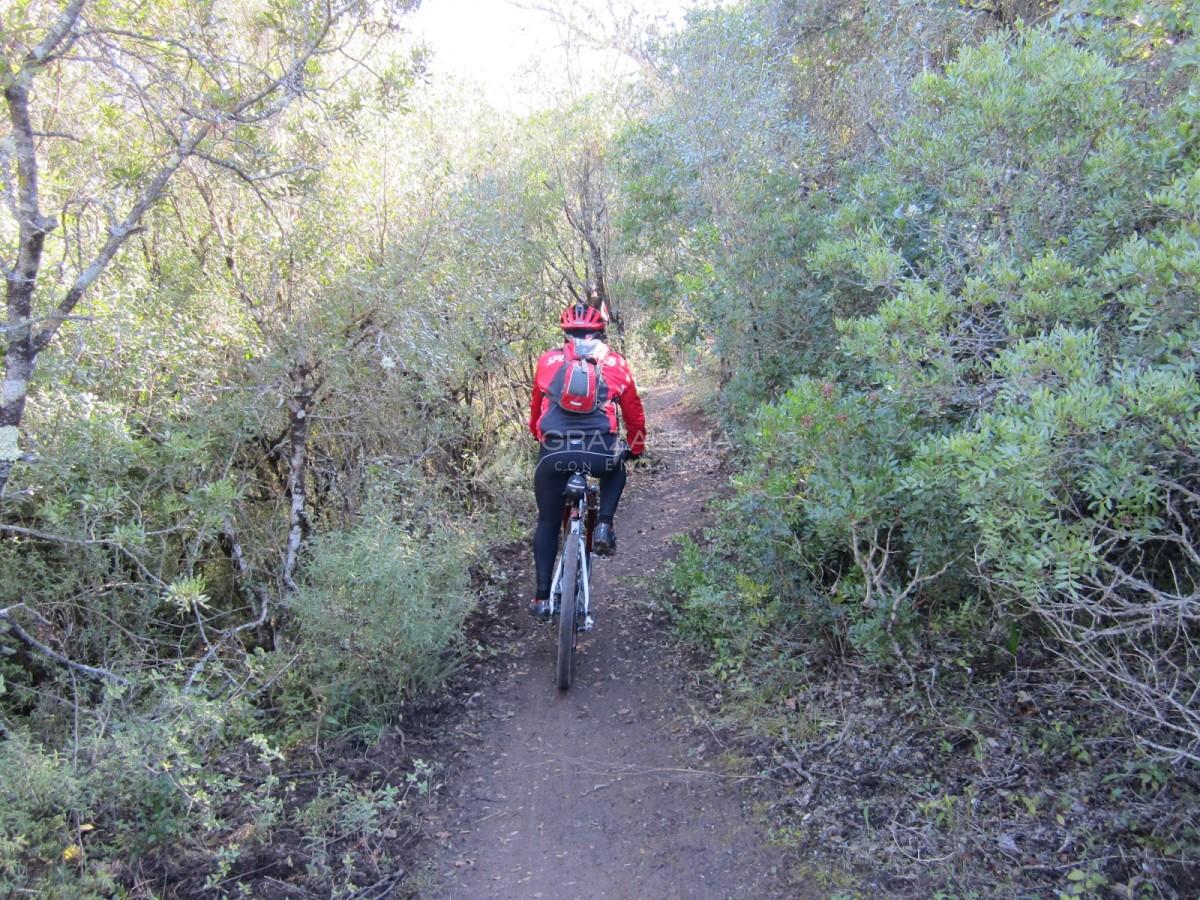 Ruta en bici en Algodonales-El Bosque Imagen