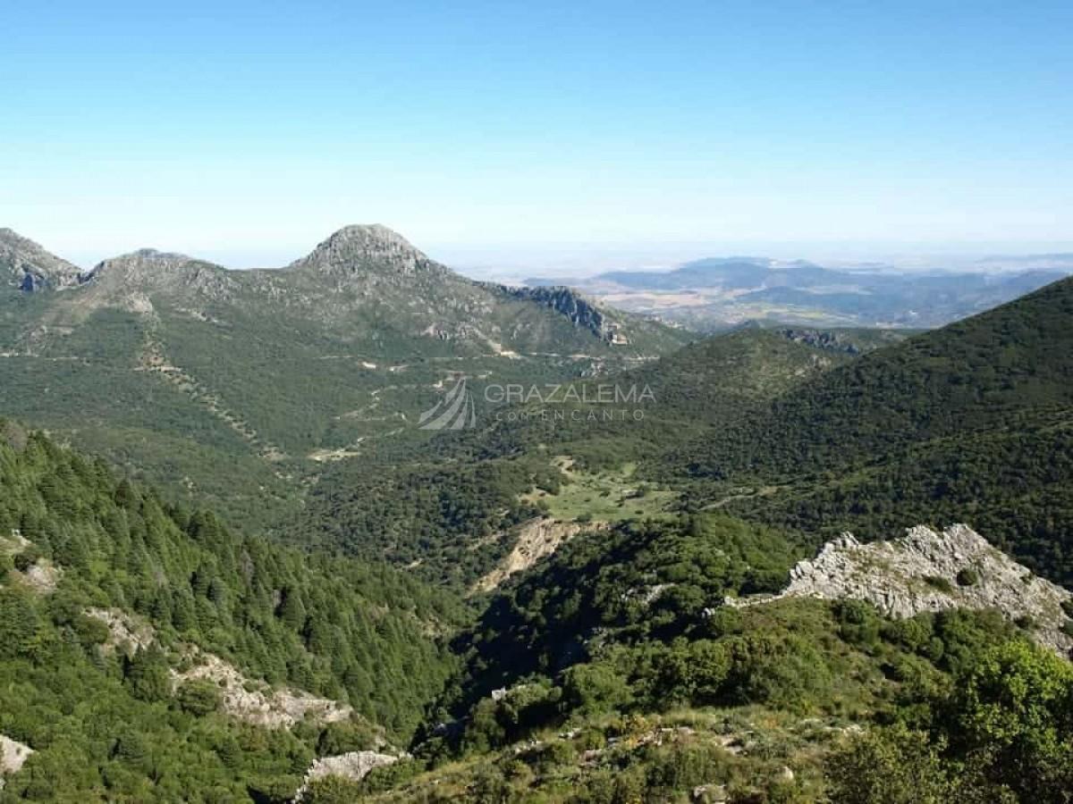 Senderismo en la Sierra de Grazalema Imagen