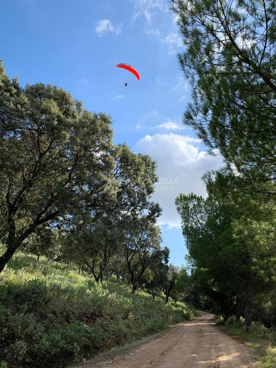 Vuelo en parapente en El Bosque Imagen