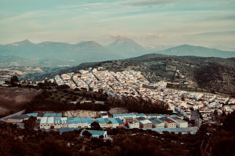 Prado del Rey, desde el Cerro Verdugo. Imagen