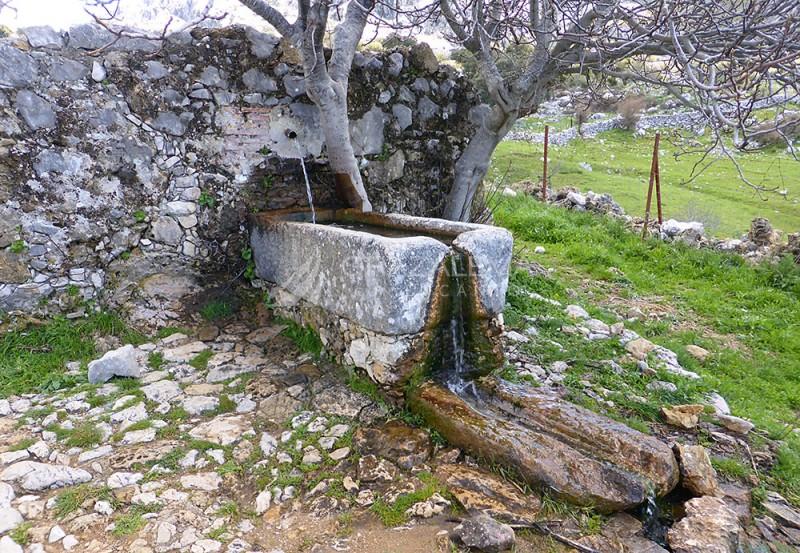 Fuente del Tejar Imagen