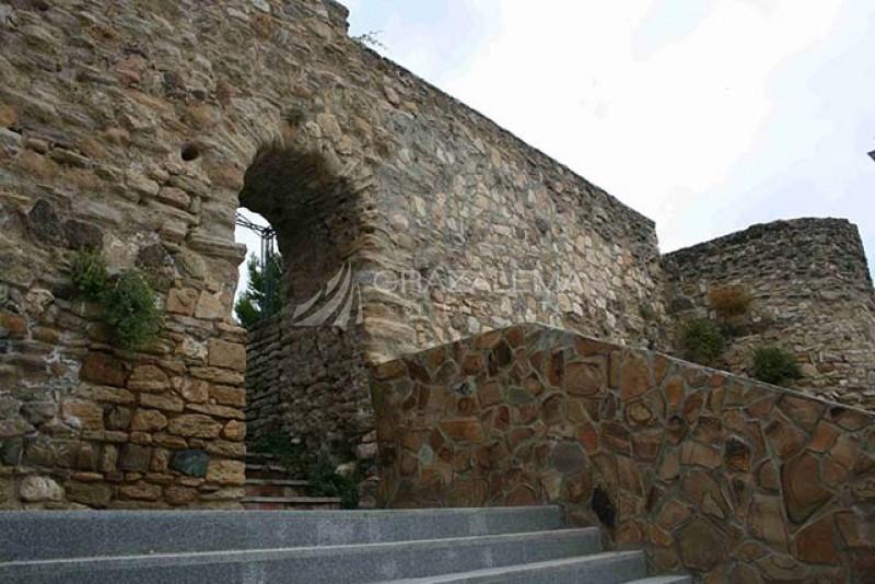 Antigua Fortaleza Nazarí Imagen