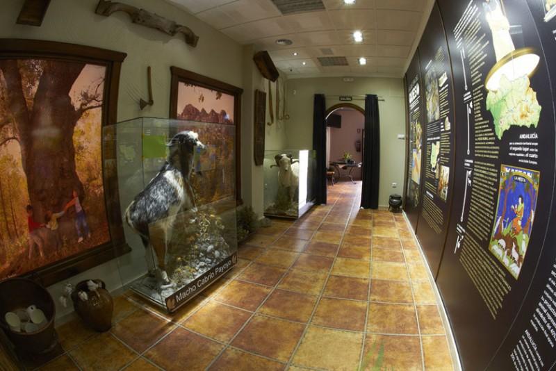 Museo del Queso Imagen