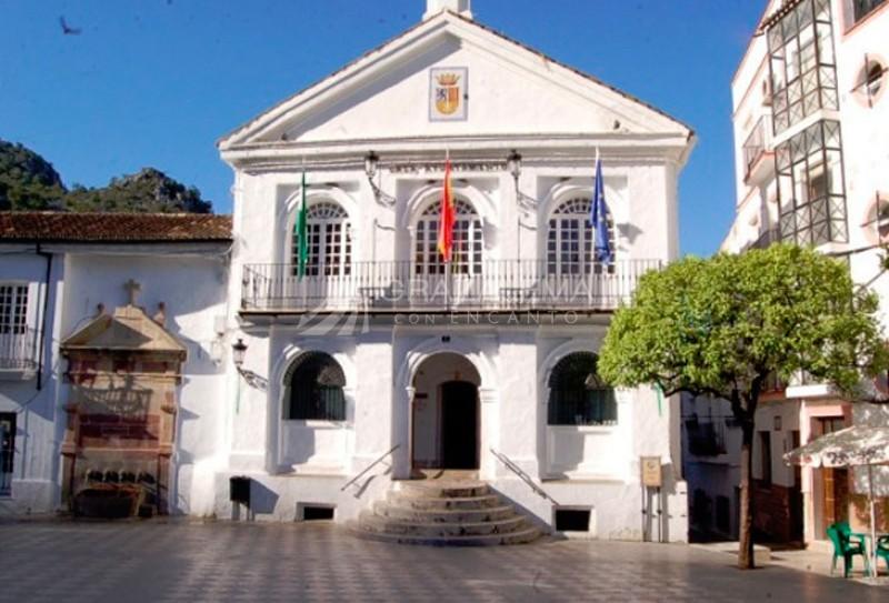 Fuente de Carlos III (Fuente de La Plaza) Imagen