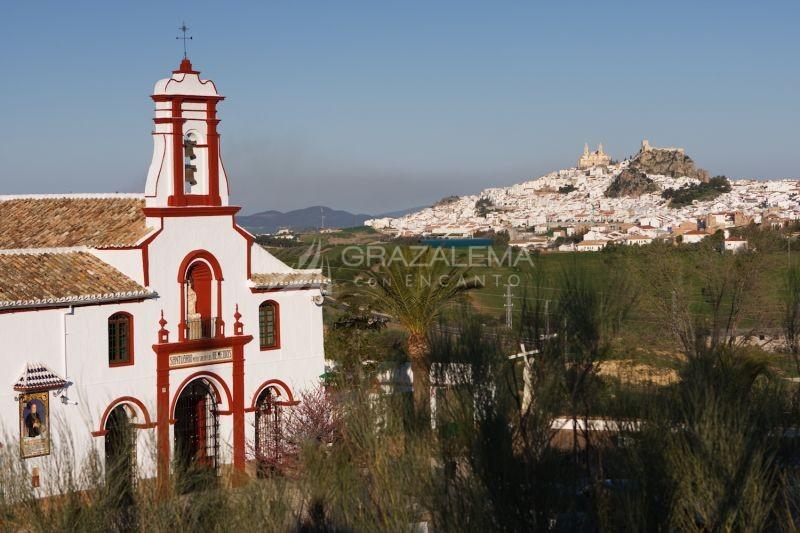 Santuario de Nuestra Señora de los Remedios Imagen