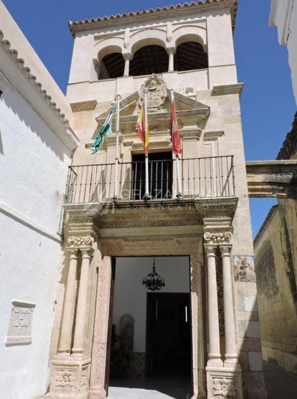 Palacio del Mayorazgo Imagen
