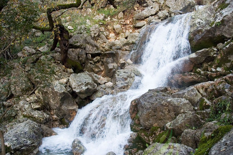 Fuentes del río Hondón Imagen