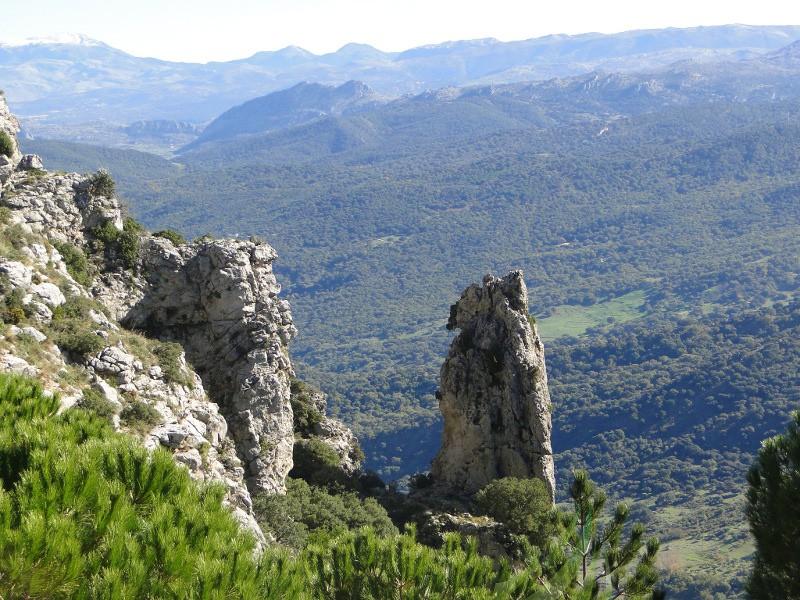 Puerto de las Palomas - Cerro Coro Imagen