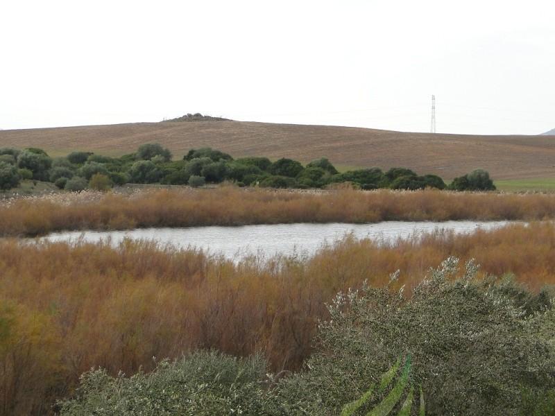 Lagunas de Espera Imagen