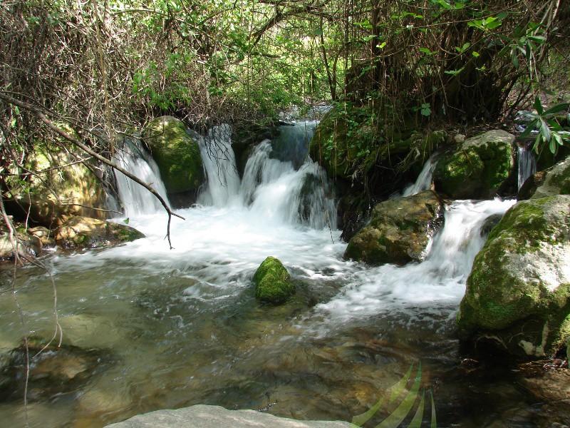 Río Majaceite Imagen