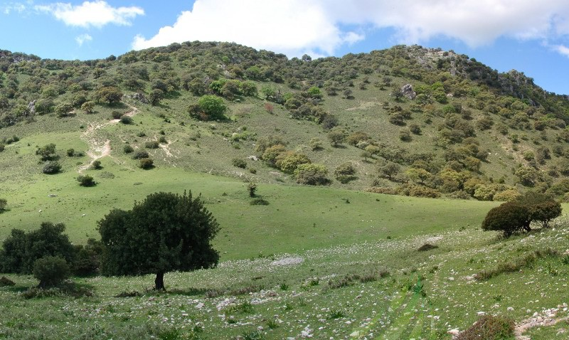 Subida al Pico Albarracín Imagen